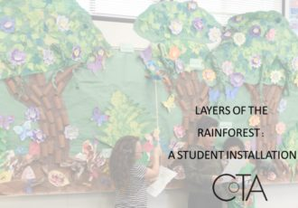 Rainforest Installation