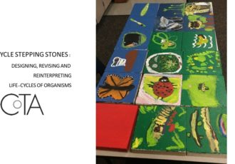 Life Cycle Stepping Stones